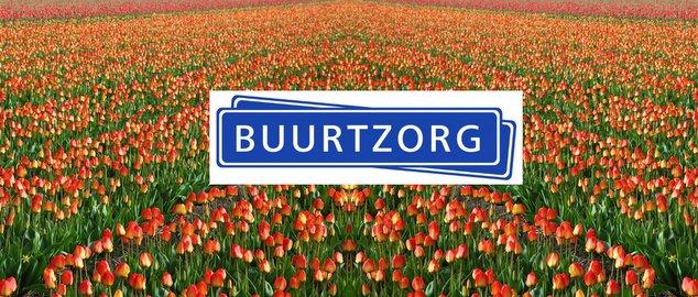 Novéquilibres : Organisations opales par l'exemple : l'association néerlandaise Buurtzorg
