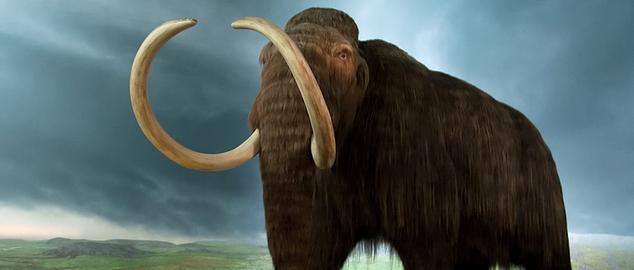 Novéquilibres : Les mammouths ont-ils disparu ?