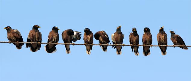 Novéquilibres : Osons la vulnérabilité